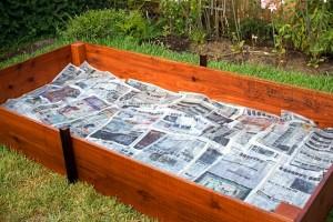 Мульчирование газетами в высокой грядке