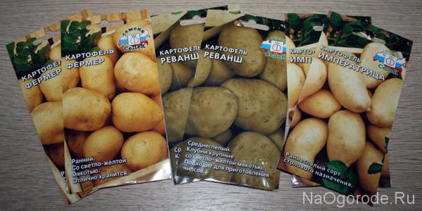 Примеры пакетиков с семенами картофеля для покупки